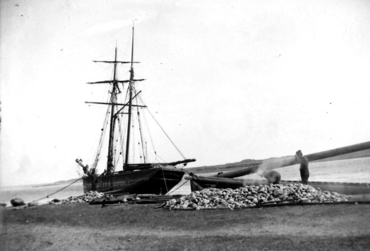 Ponoma of Portmahomack at Littleferry north side