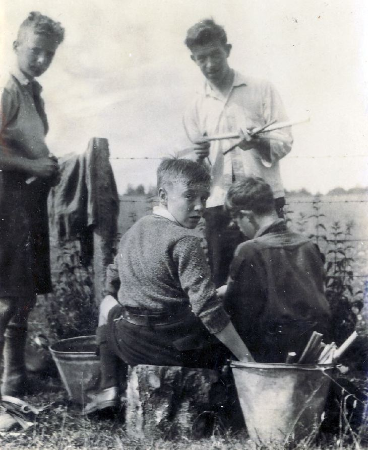 Scouts preparing rhubarb at camp