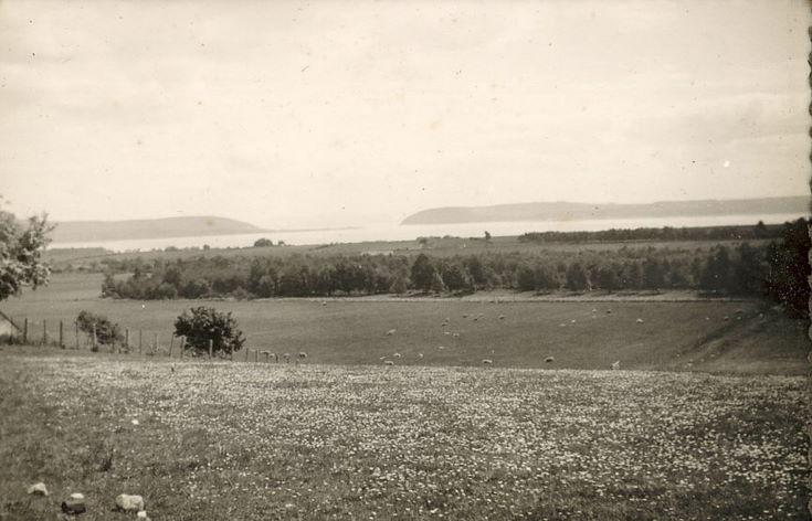 Highland View ~ Dornoch Firth ?
