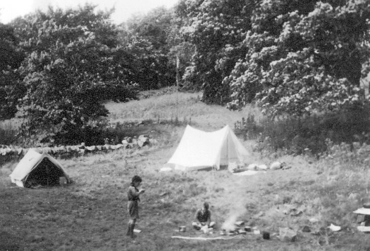 Scouts at a camp fire in a woodland setting