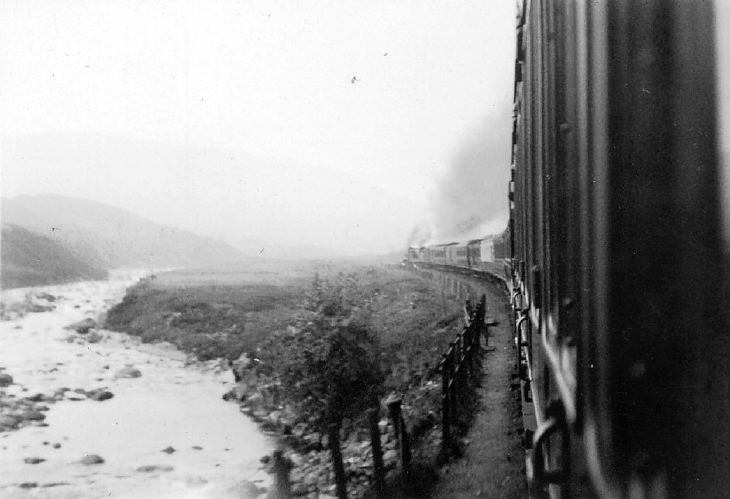 Train passing a river