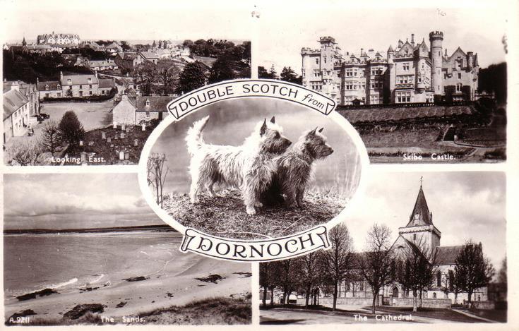 Double Scotch from Dornoch