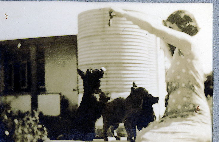 Ruby Hardie, with two dogs and a cat ~ Natal, South Africa