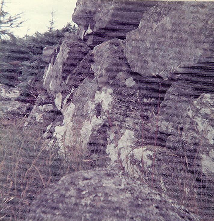 Cnoc Alldabreac Broch ~ near Dalchork