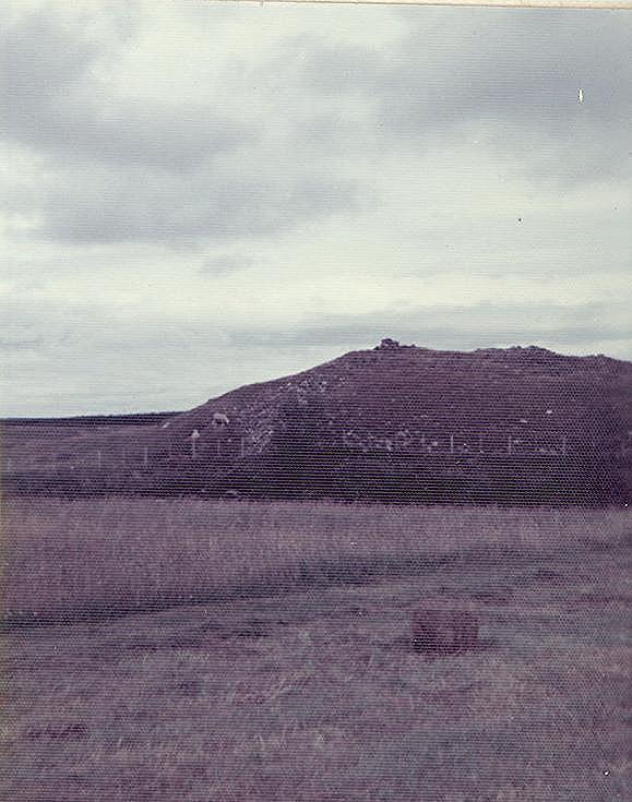 Broch at Dalchrok