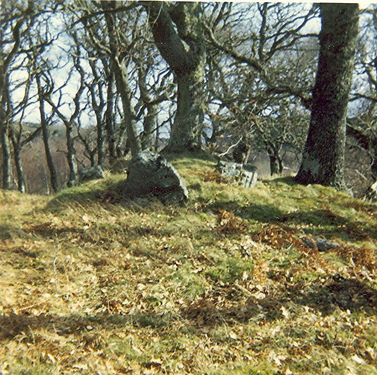 Chambered Tomb ~ Invershin Cairn