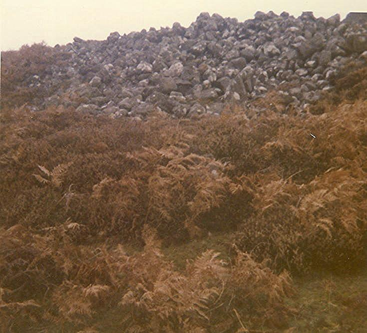 Coillenaborgie Middle Cairn
