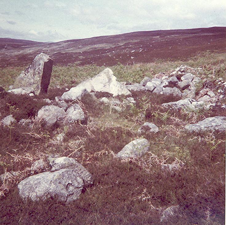 Chambered Tomb at Ascoile ~ Cairn Alt a'Mhuilnn