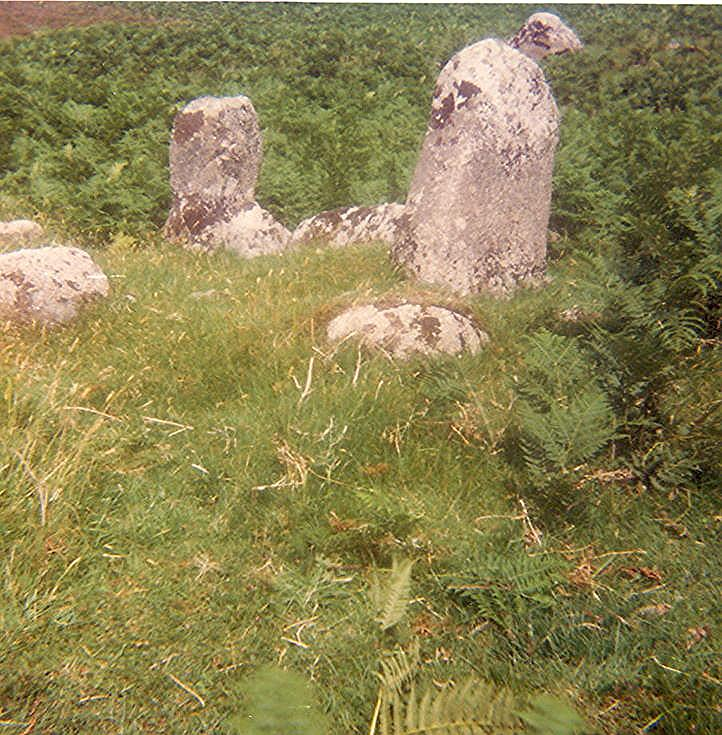 Chambered Tomb ~ Letty's Grave, Lettaidh, Rogart