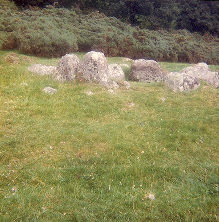 Chambered Tomb ~ Grave at Blarich