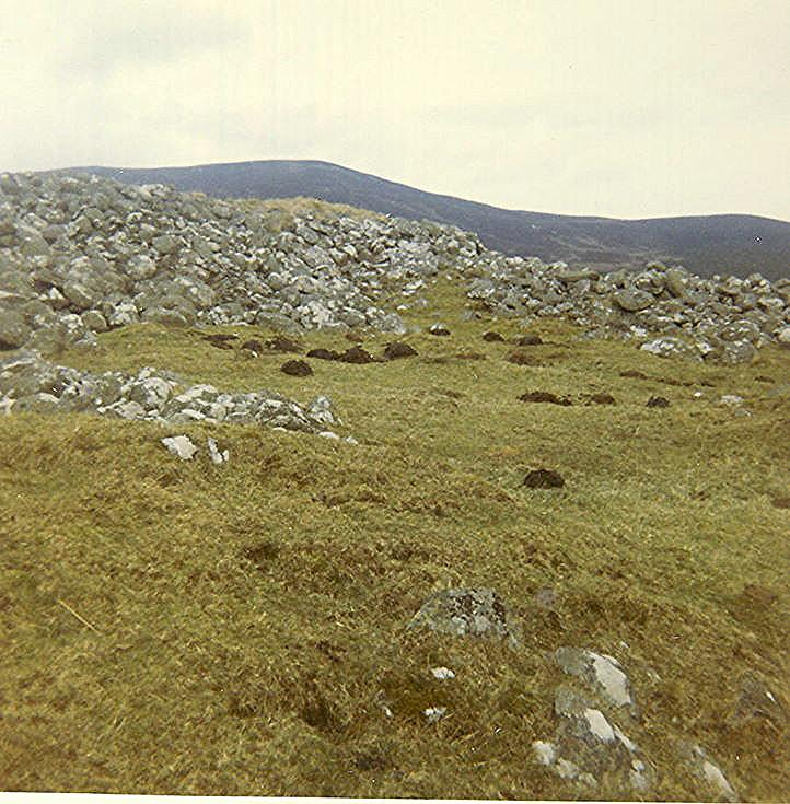 Chambered Tomb at Boath ~ Short Horned Cairn
