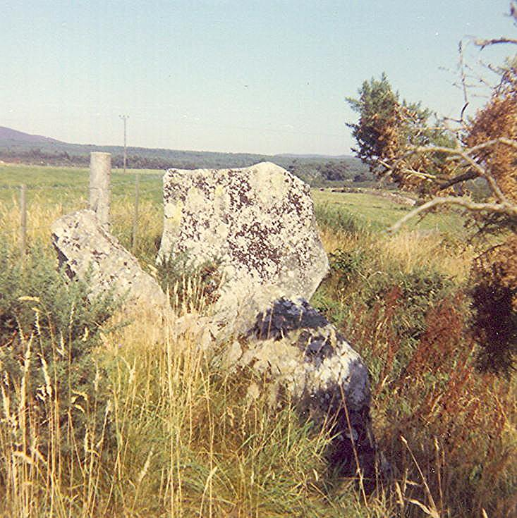 Chambered Tomb at Clashmore