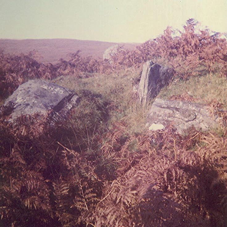 Chambered Tomb at Kinloch