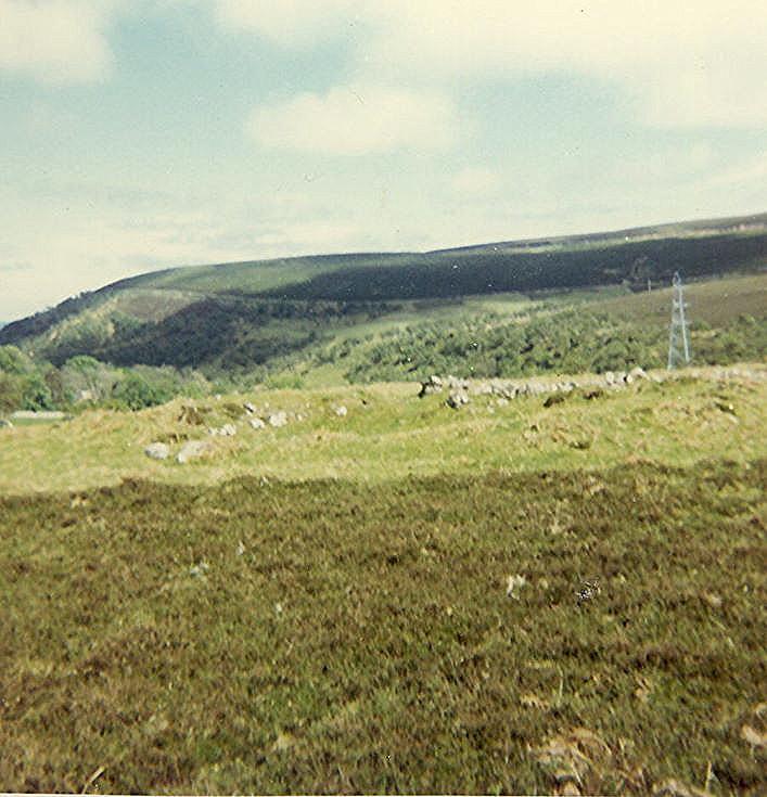 Enclosure ~ Brae Langwell, Berriedale