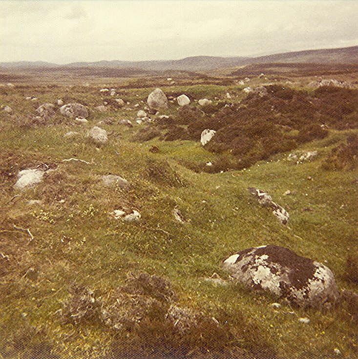 Iron Age Homestead ~ Drumergid