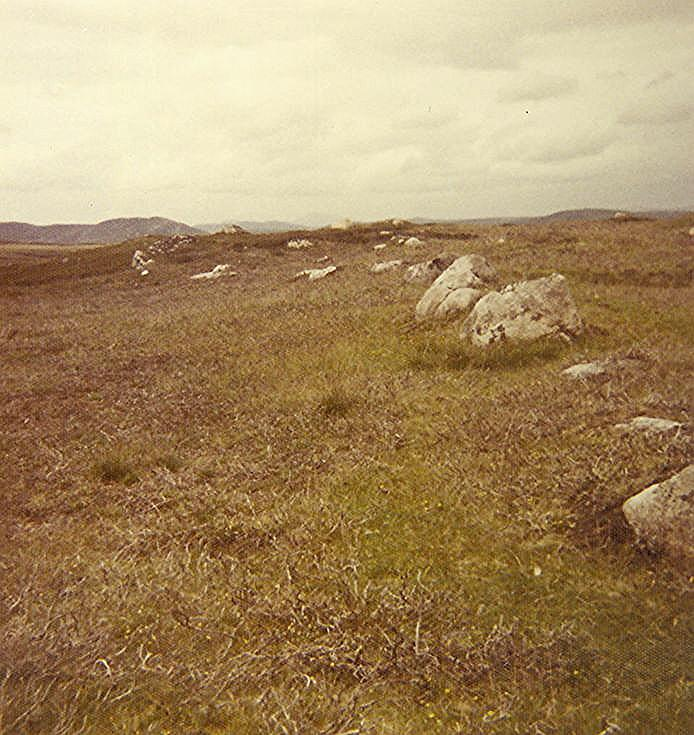 Iron Age Homestead at Drumergid ~ Enclosing Wall