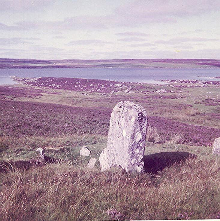 Stone Circle  at Achavanich II ~ Most northerly stone