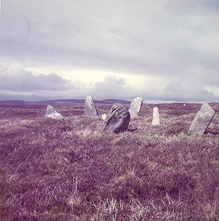 Stone Circle at Auchinduich