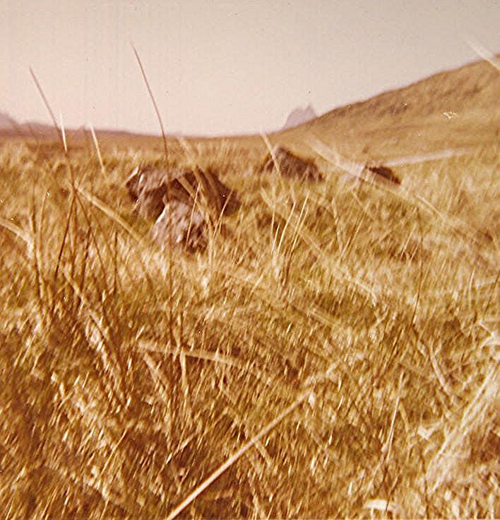 Chambered Cairn at Ledbeg, near Elphin