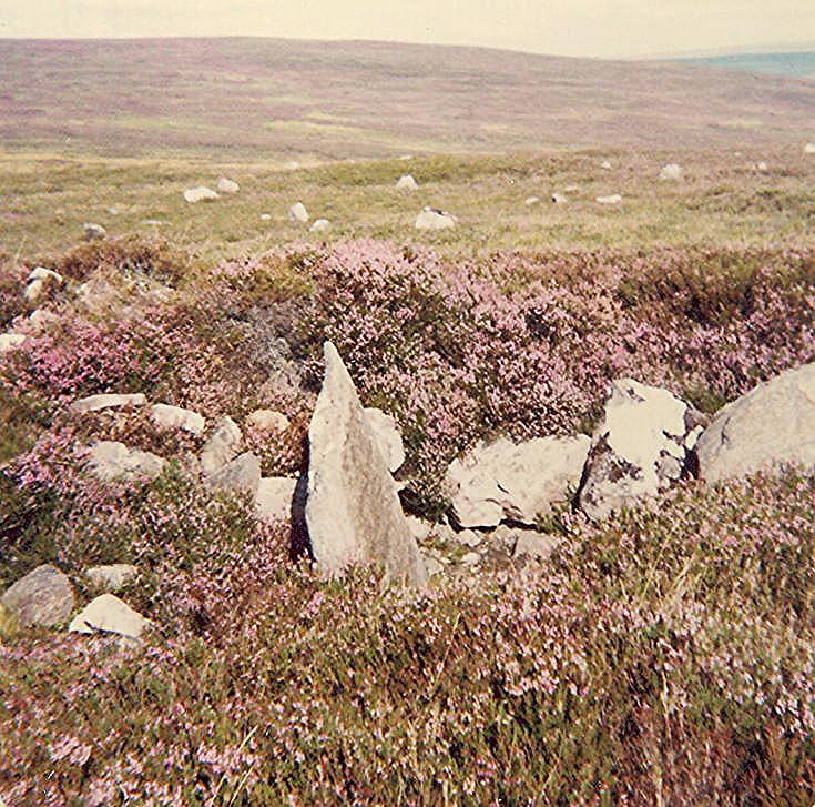 Chambered Cairn at Learable ~ on cairn, south of standing stone