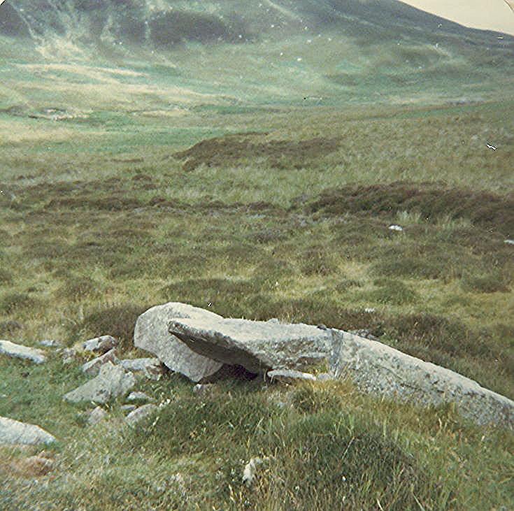 Wag at Loth ~ North of wag at ref. 6144