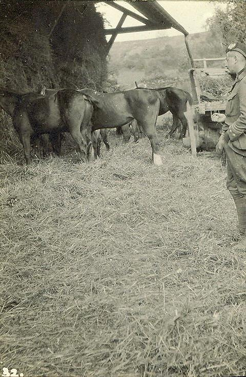 R-W & his horses at Septmonts