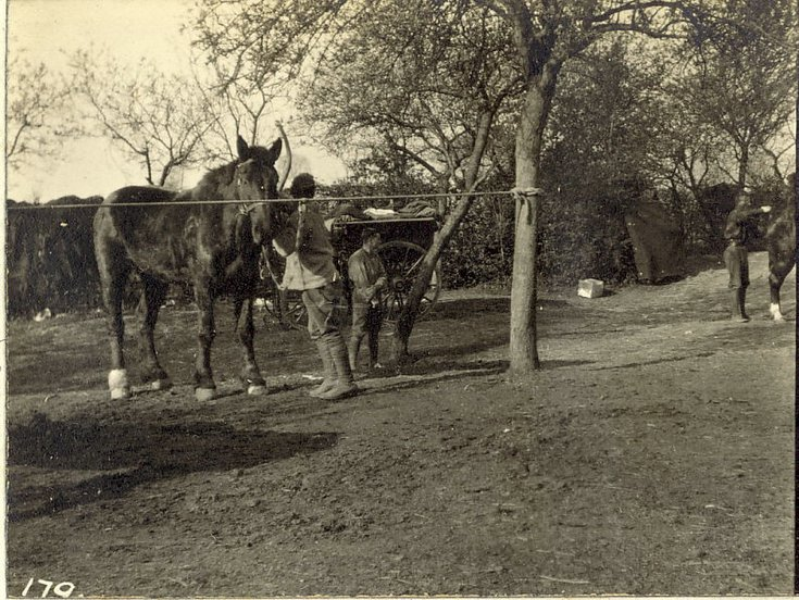 Soldiers with horses