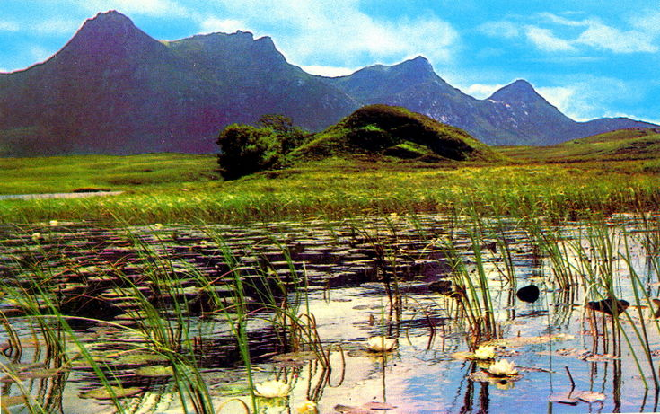 Colour postcard of Ben Loyal